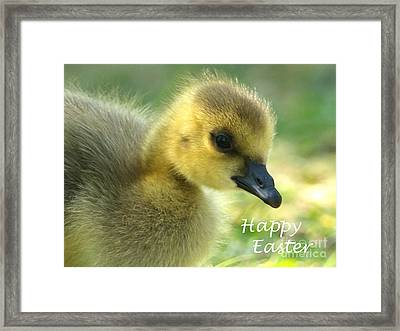 Happy Easter Gosling Framed Print
