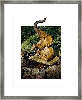 Happy Elephant Framed Print by Brian Wallace
