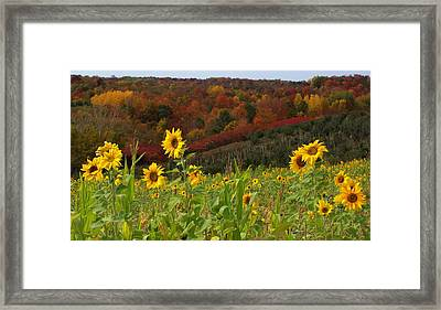Happy Fall Framed Print