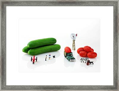 Happy Farm Framed Print by Paul Ge