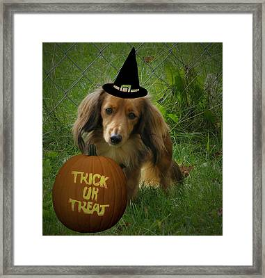 Happy Halloween Framed Print by Victoria Sheldon