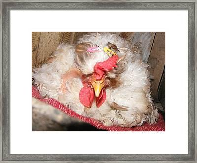 Framed Print featuring the painting Happy Hen by Bogdan Floridana Oana