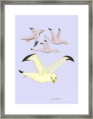 Happy Seagulls Framed Print by Fred Jinkins