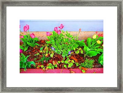 Framed Print featuring the photograph Happy Spring by Ann Johndro-Collins