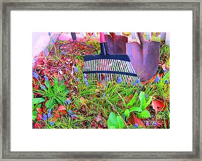 Framed Print featuring the photograph Happy Spring II by Ann Johndro-Collins