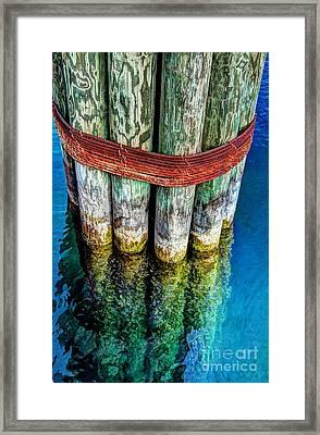 Harbor Dock Posts Framed Print by Michael Garyet