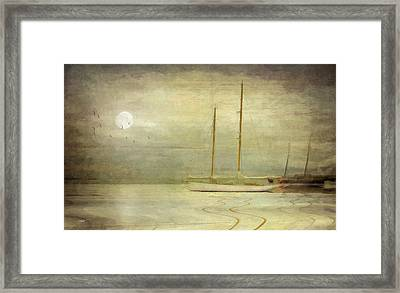 Harbor Moonlight Framed Print