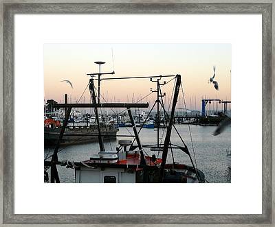 Framed Print featuring the photograph Harbor by Rdr Creative
