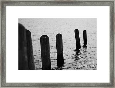 Framed Print featuring the photograph Harbor Ties by Tony Cooper