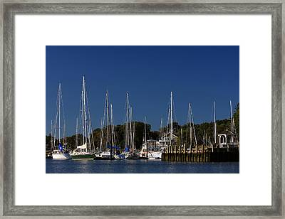 Harbor View Framed Print by Karol Livote