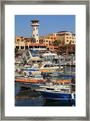 Harbor Waterfront In Cabo San Lucas Framed Print by Roupen  Baker