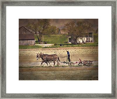 Hard Working Team Framed Print by Kathy Jennings