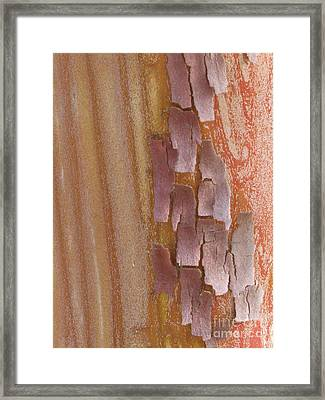 Harmonize Framed Print by Tina Marie