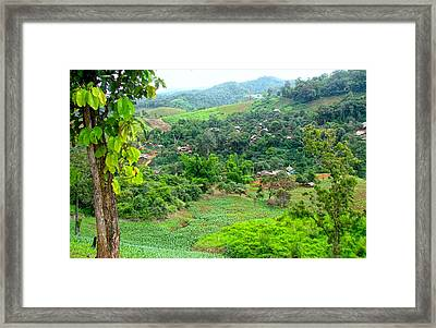 Harmony With Nature Framed Print by Roy Foos