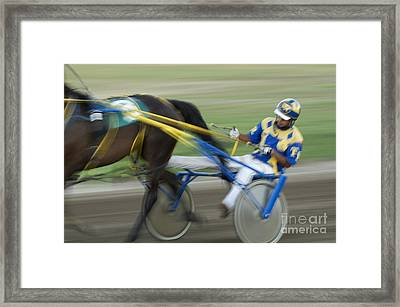 Harness Racing 2 Framed Print by Bob Christopher