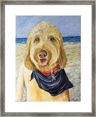 Harry At The Beach Framed Print by Maureen Pisano