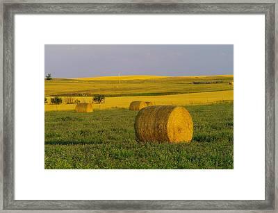 Harvest In Montana Framed Print by Jeff Swan