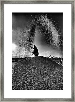 Framed Print featuring the photograph Harvest by Okan YILMAZ
