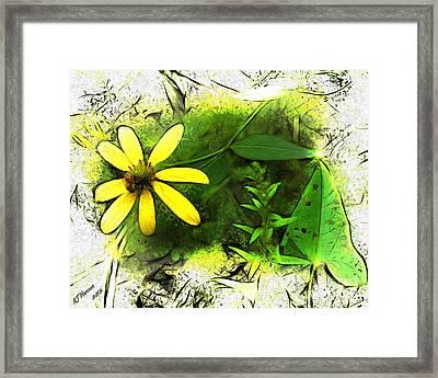 Harvest Time Framed Print by Arne Hansen