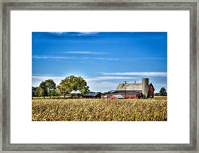 Harvest Time Framed Print by Dan Crosby