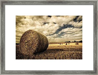 Harvest Time Framed Print by Rick Parrott