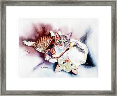 Hathaway Cats Framed Print by Maria Barry