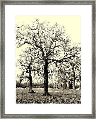 Haunted Homestead Framed Print by Joe Jake Pratt