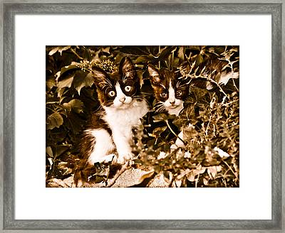 Athens, Greece - Haunted Framed Print