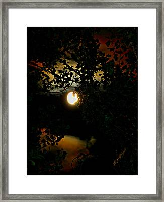 Framed Print featuring the photograph Haunting Moon IIi by Jeanette C Landstrom