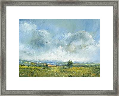 Hawk Over The Yar Valley Framed Print by Alan Daysh