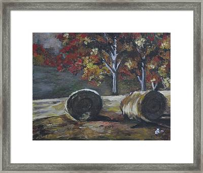 Hay Bales In Fall Framed Print by Kim Selig
