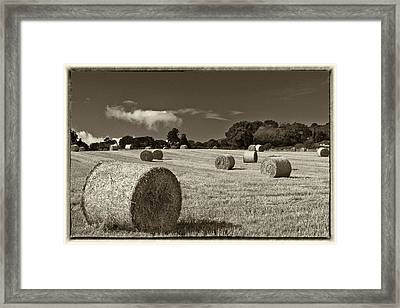 Hay Bales In Sepia Framed Print