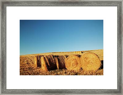 Hay Bales Framed Print by Matteo Colombo