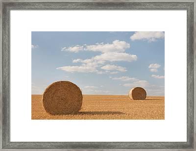 Hay Barrels In Burgundy Region Framed Print by Niall Sargent