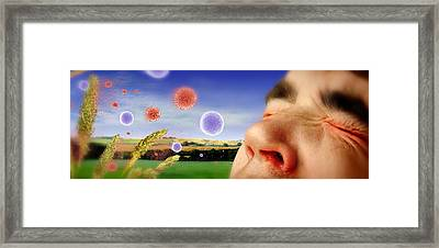 Hay Fever Framed Print by Tim Vernon, Lth Nhs Trust