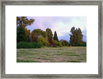 Framed Print featuring the photograph Hay Field Guardians by Pamela Patch