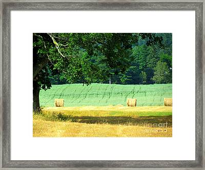 Framed Print featuring the glass art Hay Landscape by France Laliberte