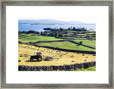 Hay Making, Lough Corrib, Co Galway Framed Print by The Irish Image Collection
