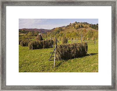 Hay Racks And Stooks, Romania Framed Print by Bob Gibbons