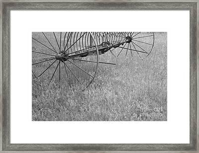 Hay Rake  Framed Print by Wilma  Birdwell