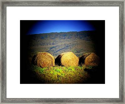 Hay Rolls On Mountain Framed Print by Michael L Kimble