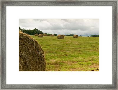Haybales In Field On Stormy Day Framed Print by Douglas Barnett