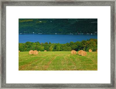 Hayfield And Lake IIi Framed Print by Steven Ainsworth