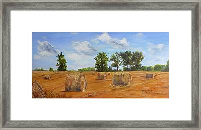 Hayfield Framed Print