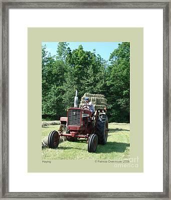 Framed Print featuring the photograph Haying by Patricia Overmoyer
