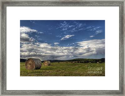 Haymaking Time Framed Print by Michal Boubin