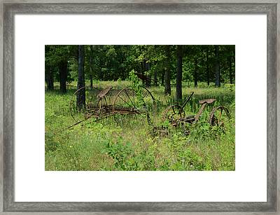 Hayrake And Cutter In The Weeds 2 Framed Print