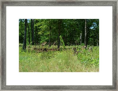 Hayrake And Cutter In The Weeds Framed Print