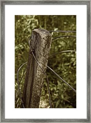 Haywire Framed Print by Odd Jeppesen