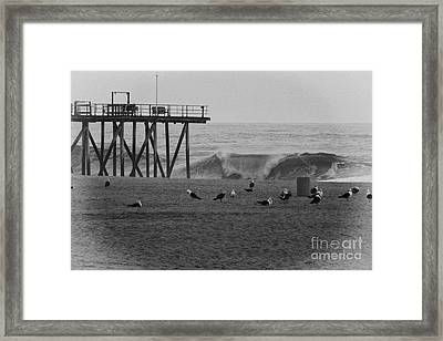 Hdr Black White Beach Beaches Ocean Sea Seaview Waves Pier Photos Pictures Photographs Photo Picture Framed Print by Pictures HDR